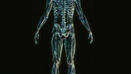 Designing Exoskeletons